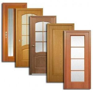 Двери, дверные блоки Зольного