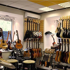 Музыкальные магазины Зольного