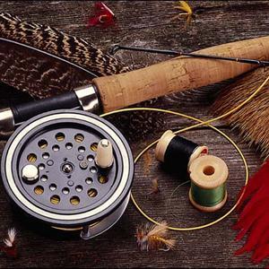 Охотничьи и рыболовные магазины Зольного